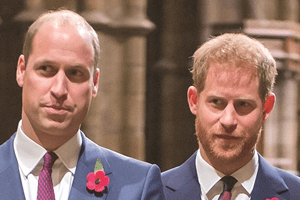 "William e Harry ""não se falam"""