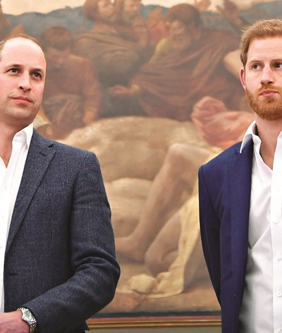 William e Harry unidos por Diana